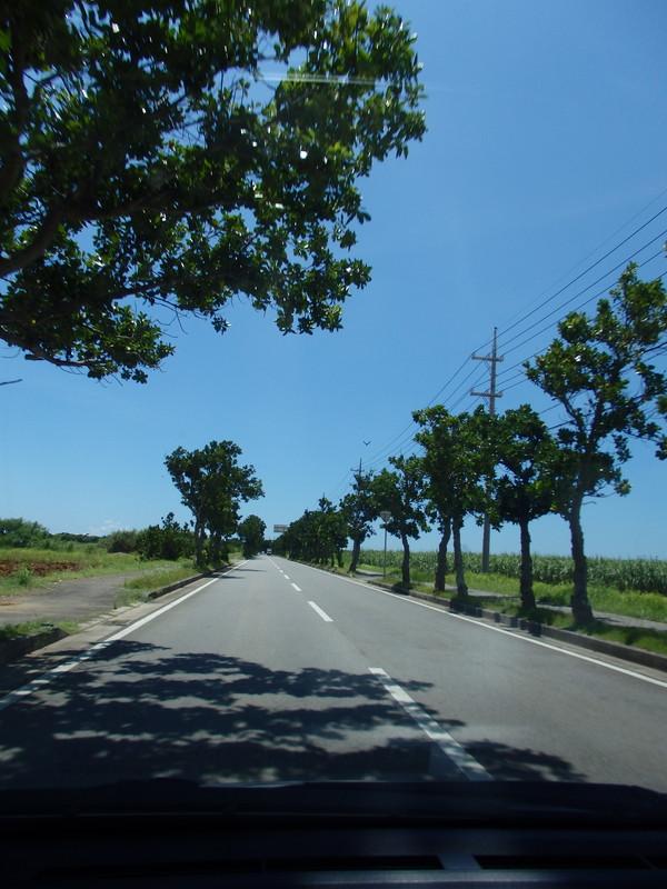 まっすぐの田舎道